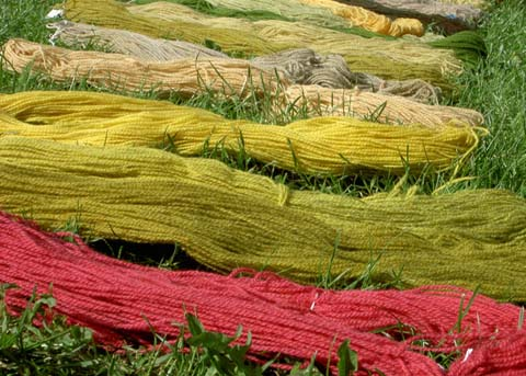 Tipos de fibras textiles para alfombras limpiexpress for Tipos de alfombras